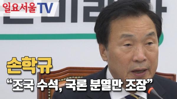 [영상] 손학규
